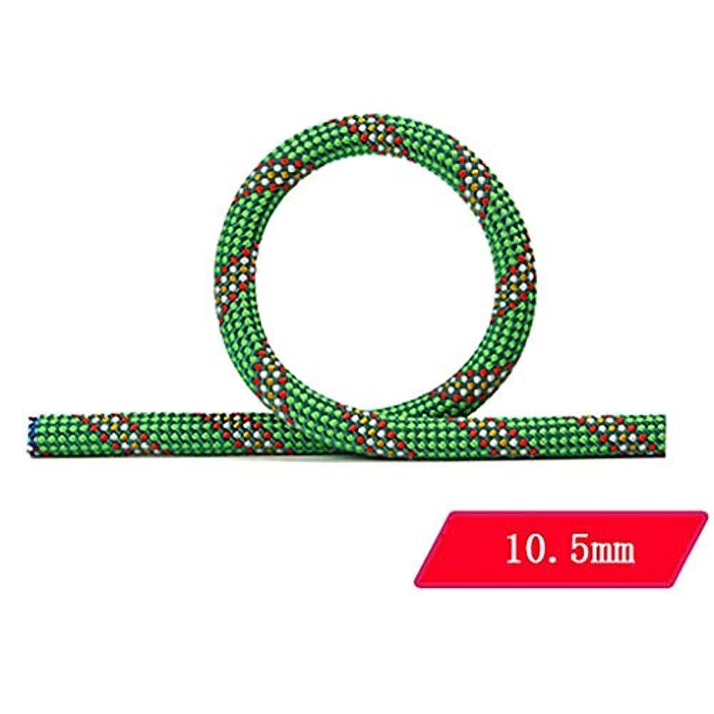 整然とした無意味オアシスロープ(張り綱) 登山用ロープ屋外用パワーロープ高地転倒防止用安全ロープ直径10.5mm(0.41in)グリーン (サイズ さいず : 200M(656FT))