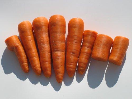 『(常温便) 無農薬無化学肥料 にんじん (規格外品) 3kg (岩手県 おいしゅ~る店経由)』の2枚目の画像