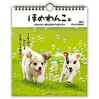 日本ホールマーク 2021年 カレンダー 壁掛け 小 ほめわんこ 775414