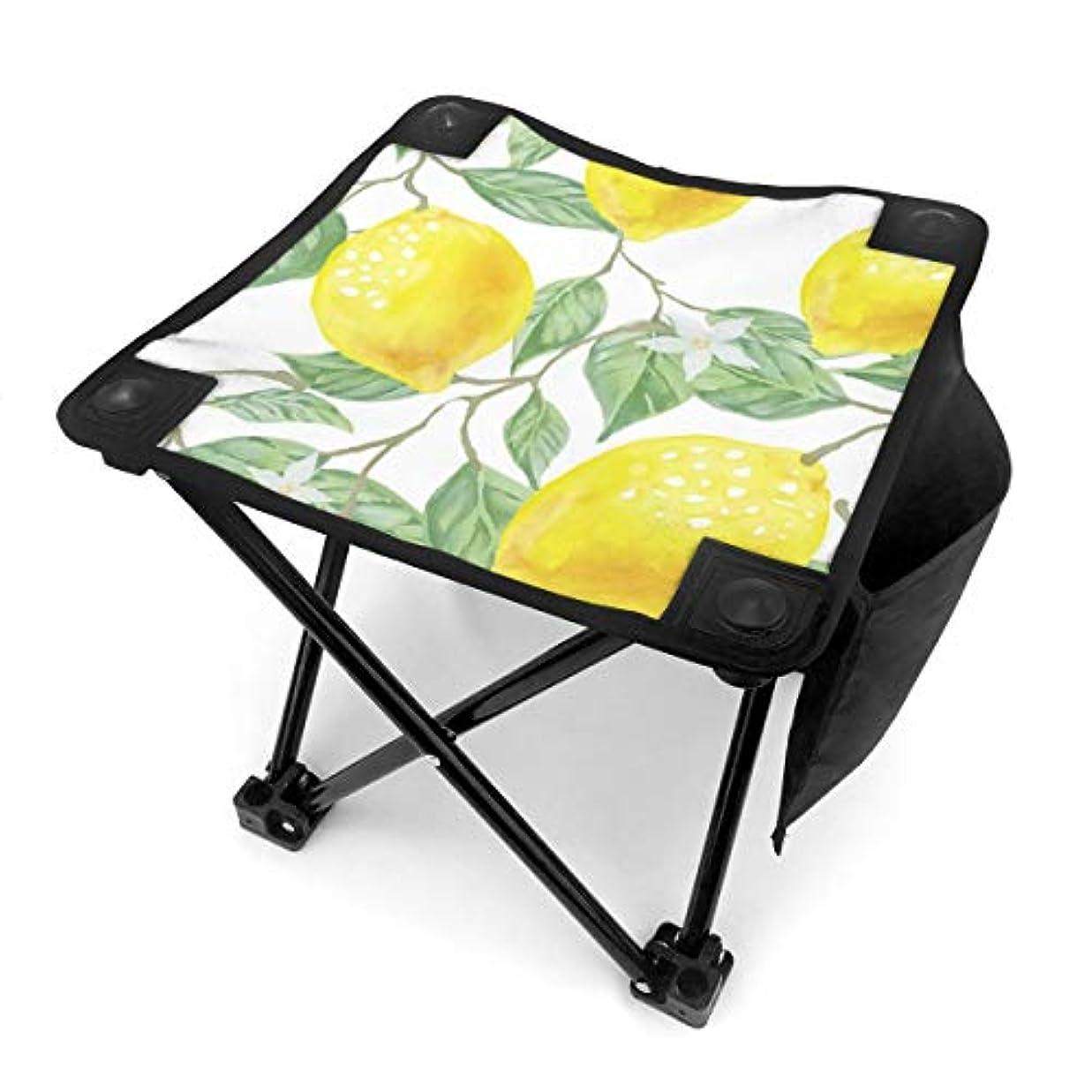 経度盲目絶縁する折りたたみ椅子 レモンの葉 アウトドアチェア 収納バッグ付き アウトドアチェア 折り畳み式 椅子 折りたたみ コンパト椅子 キャンプスツール 携帯便利 旅行用/お釣り/キャンプ/アウトドアなど対応