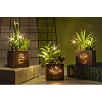 人工多肉植物 人工観葉植物三種セット 木箱にLEDライト付き 人工多肉植物 プラスチック製トピアリー 家庭・オフィス飾り用 テーブル装花 インテリアグリーン