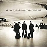 ALL THAT YOU CAN'T LEA [12 inch Analog]