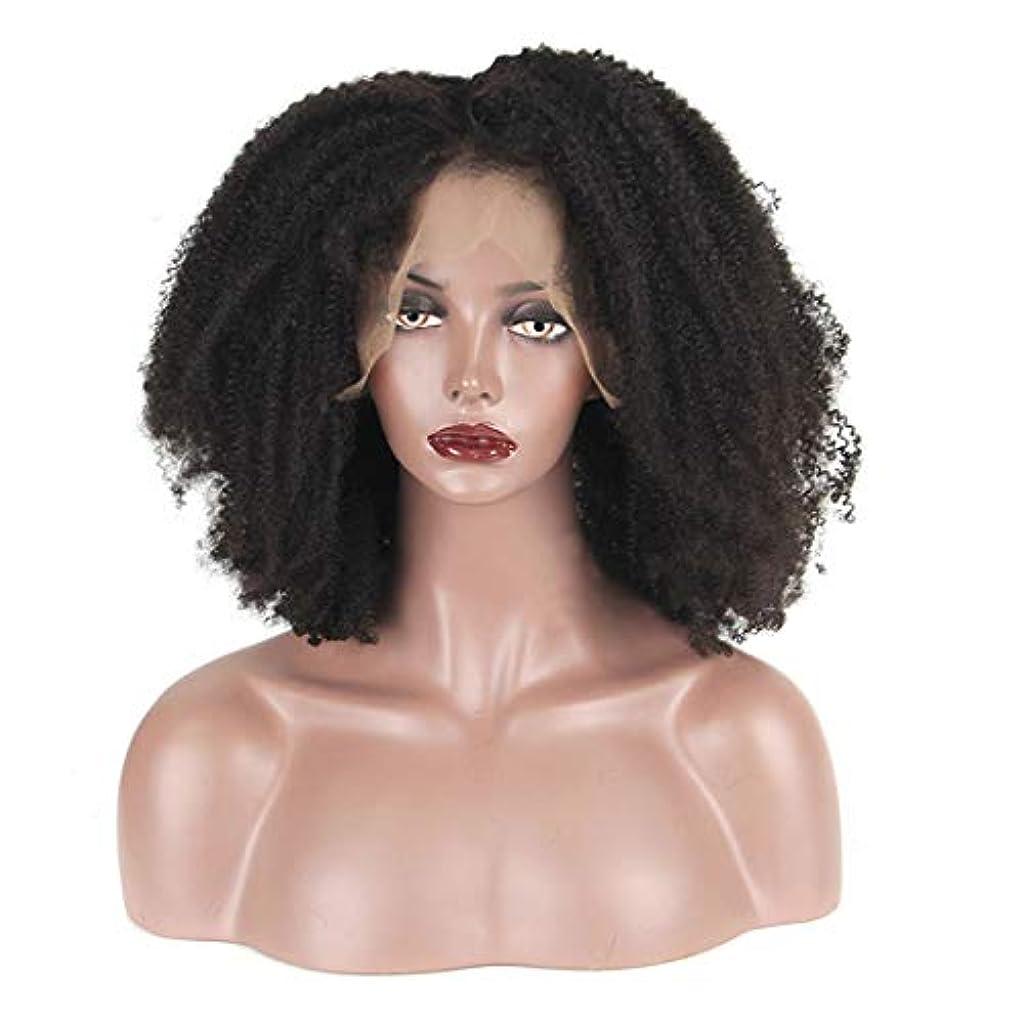お世話になったリンスチャンバーYOUQIU ブラックウィッグ女性フロントレースの化学繊維の爆発頭小ロールショートカーリーヘアウィッグセットウィッグ (色 : 黒)
