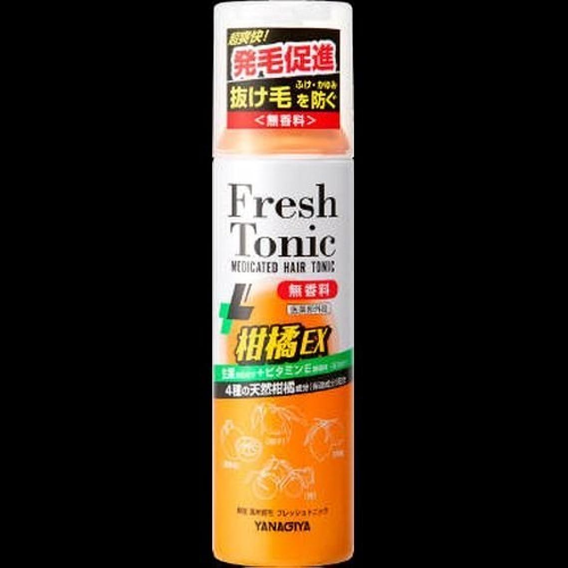 資金血地図【まとめ買い】薬用育毛フレッシュトニック柑橘EX(190g) ×2セット