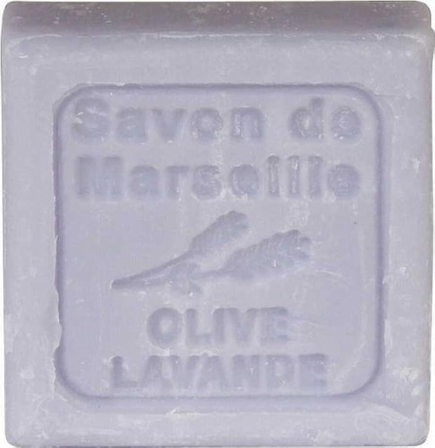 過敏な水星デイジール?シャトラール ソープ 30g オリーブラベンダー SAVON30