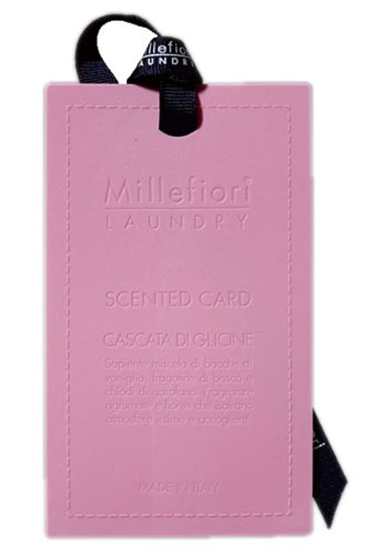 マオリボトルネック間違えたMillefiori センテッドカード ウィステリア CARD-A-003