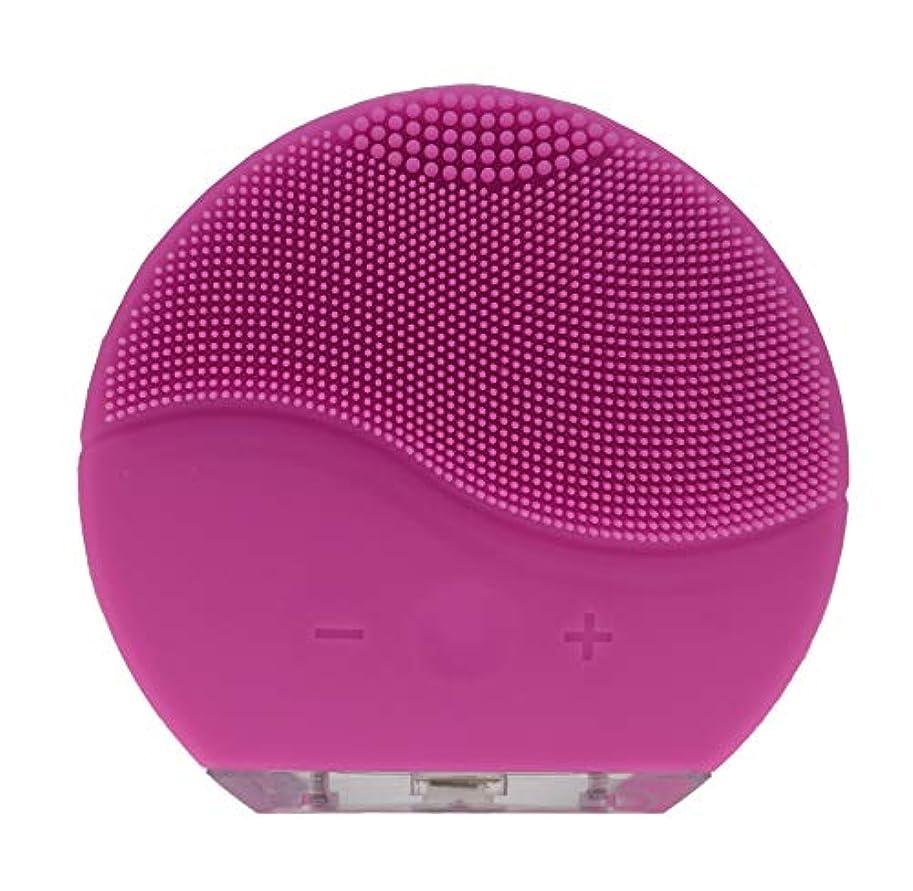 威信倒錯パキスタンダンマ防水シリコーン電気洗顔ブラシブラシマッサージャーUSB充電&充電式(ピンク)