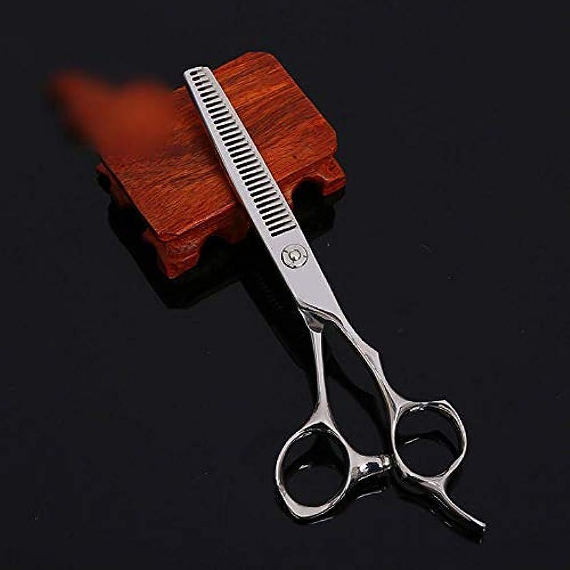 端末素晴らしいマザーランドWASAIO 理容サロンテクスチャーレイザーエッジシザー髪のはさみステンレスの設定ツール6インチカービング美容専門の理髪はさみ歯 (色 : Silver)