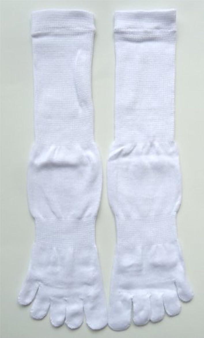 マキシム衣服雪だるま日本製 5本指ソックス 綿100%足指爽やか サポーター付 【23~27cm】 ホワイト 6足組