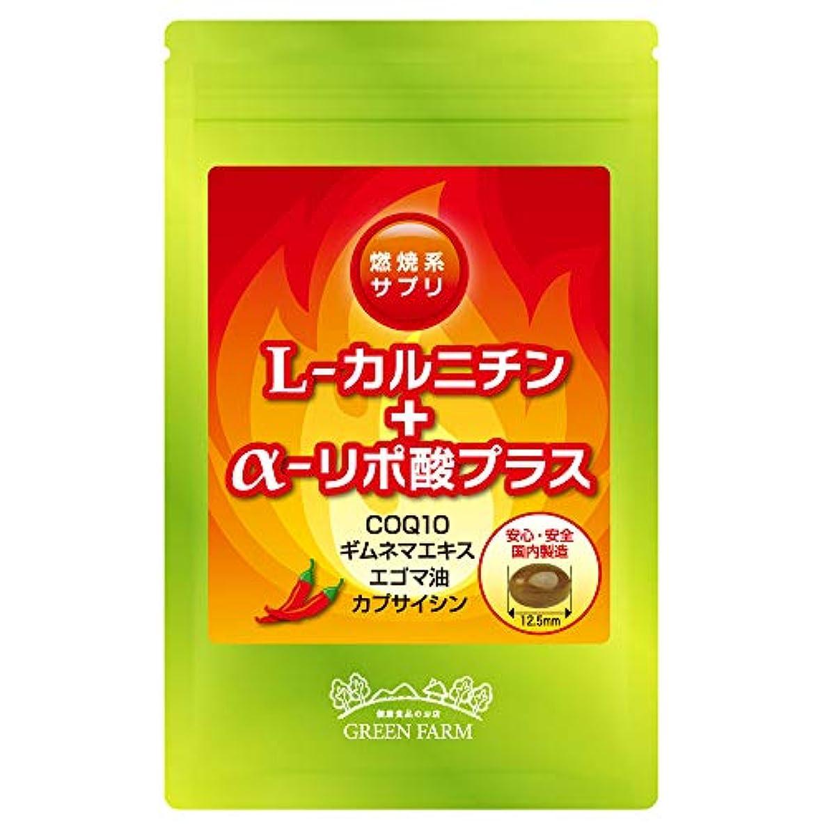せせらぎケイ素ハードリングL-カルニチン+アルファリポ酸プラス アミノ酸サプリ(オメガ3系脂肪酸 エゴマ油?COQ10配合)国内製造 1日2粒目安 約30日分