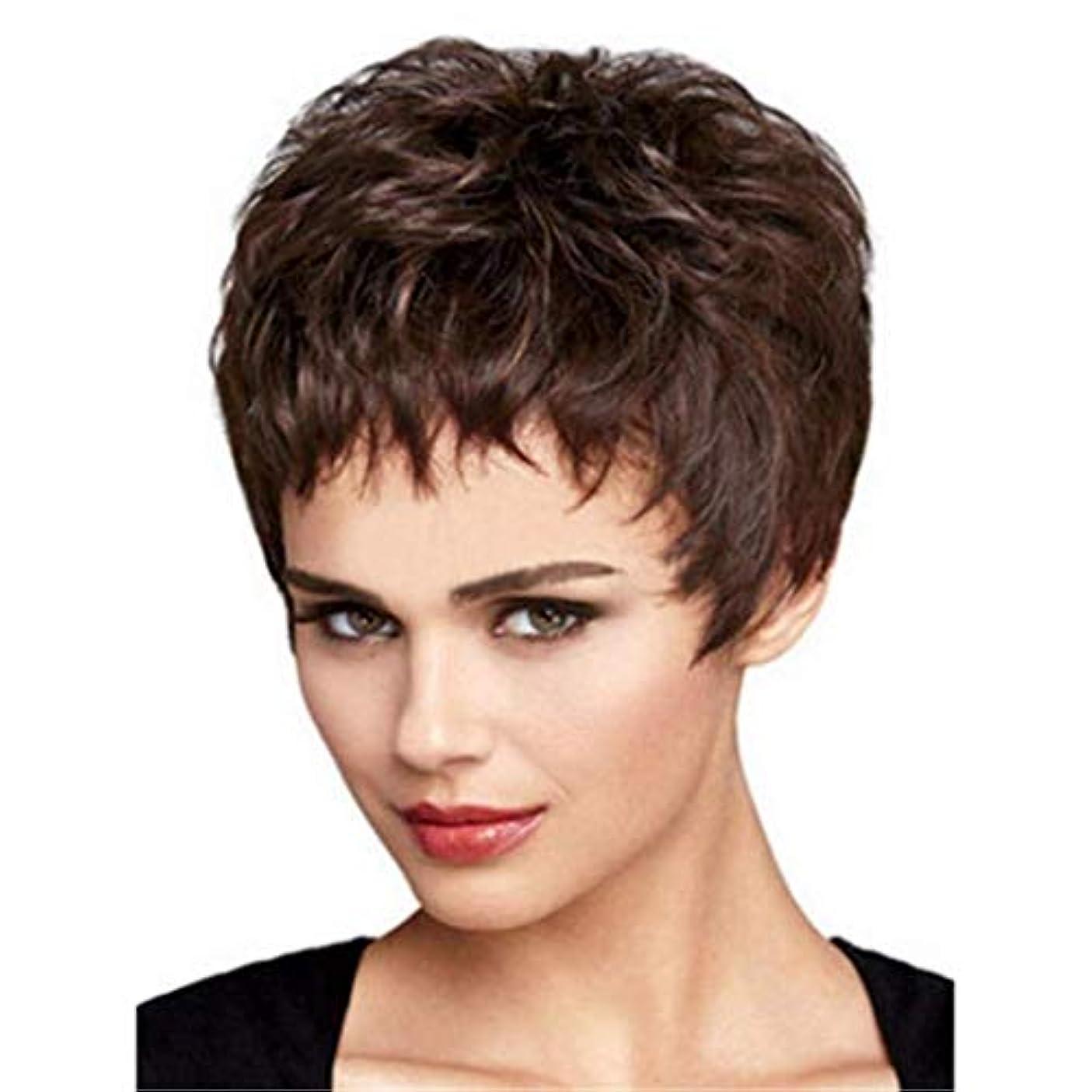 スケッチ圧縮する工夫するLRLTERRY 女性用ウィッグ、レディースブラウンショートカーリーヘアー高品質ソフトリアルヘアデイリーパーティーウィッグA3ウィッグ