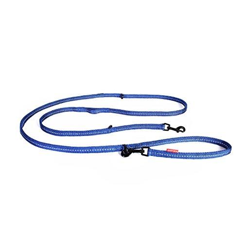 EZYDOG 犬用リード ウ゛ァリオ6 ライト 小型犬用 ブルー