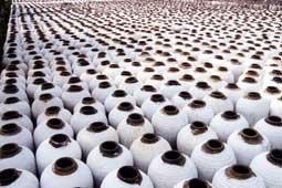 中国紹興酒/越王台興加飯酒24000ML 3年 一升瓶13.3本分