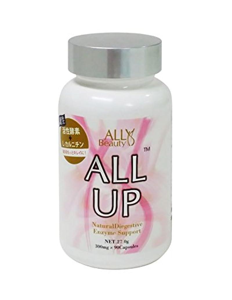 滑り台排他的食欲ALLUP™-オールアップ