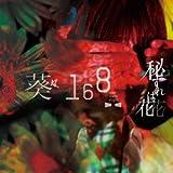 BURN / 葵-168-