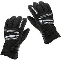 Lovoski 男女兼用 通気性 防風 防水 暖かい スノーボード スキー手袋 全4色3サイズ
