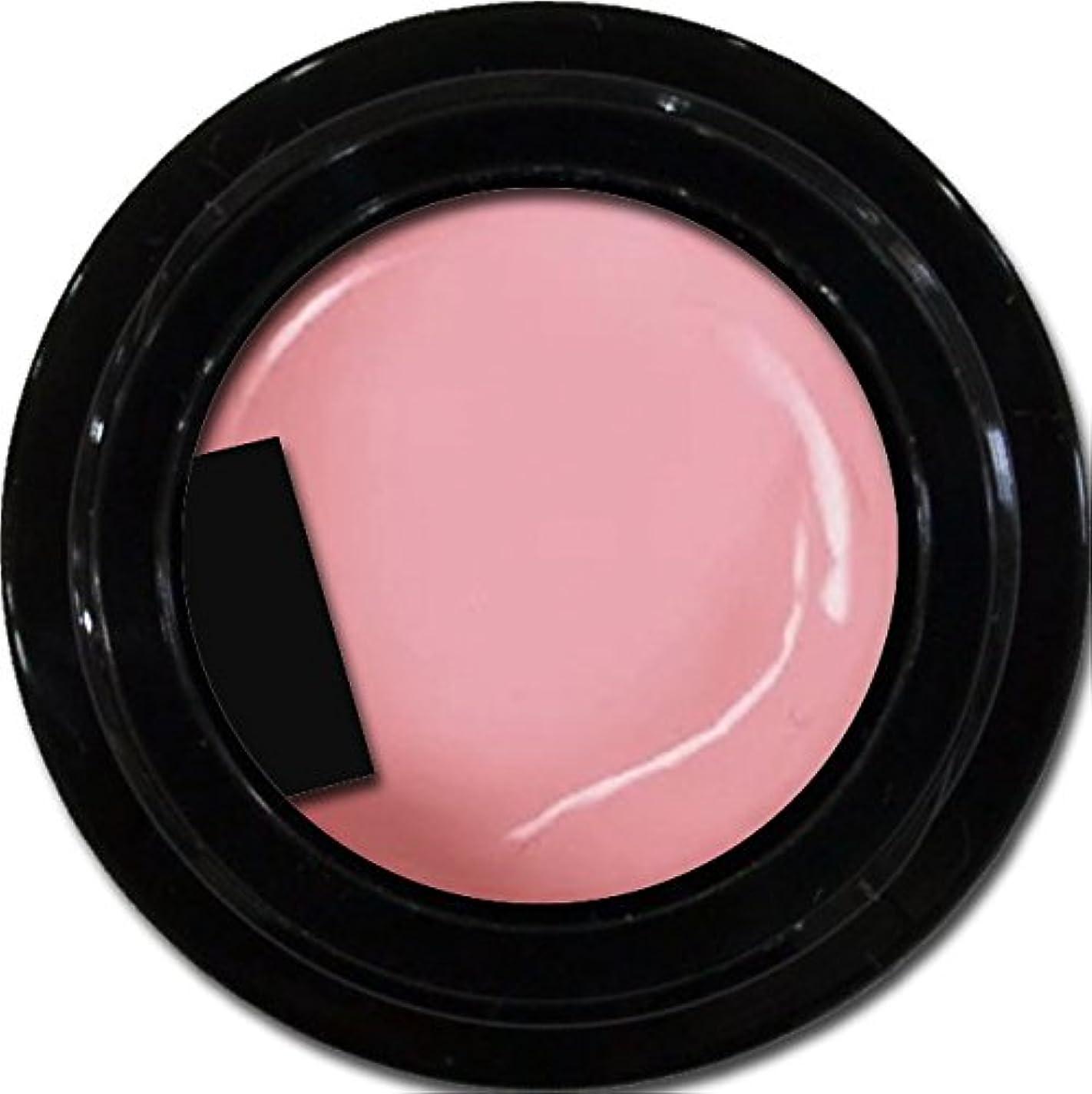 出身地マインド宣伝カラージェル enchant color gel M209 SalmonPink 3g/ マットカラージェル M209 サーモンピンク 3グラム