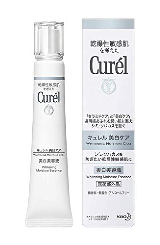 世論調査ブロンズストレスの多い【花王】キュレル 美白美容液 (30g) ×10個セット