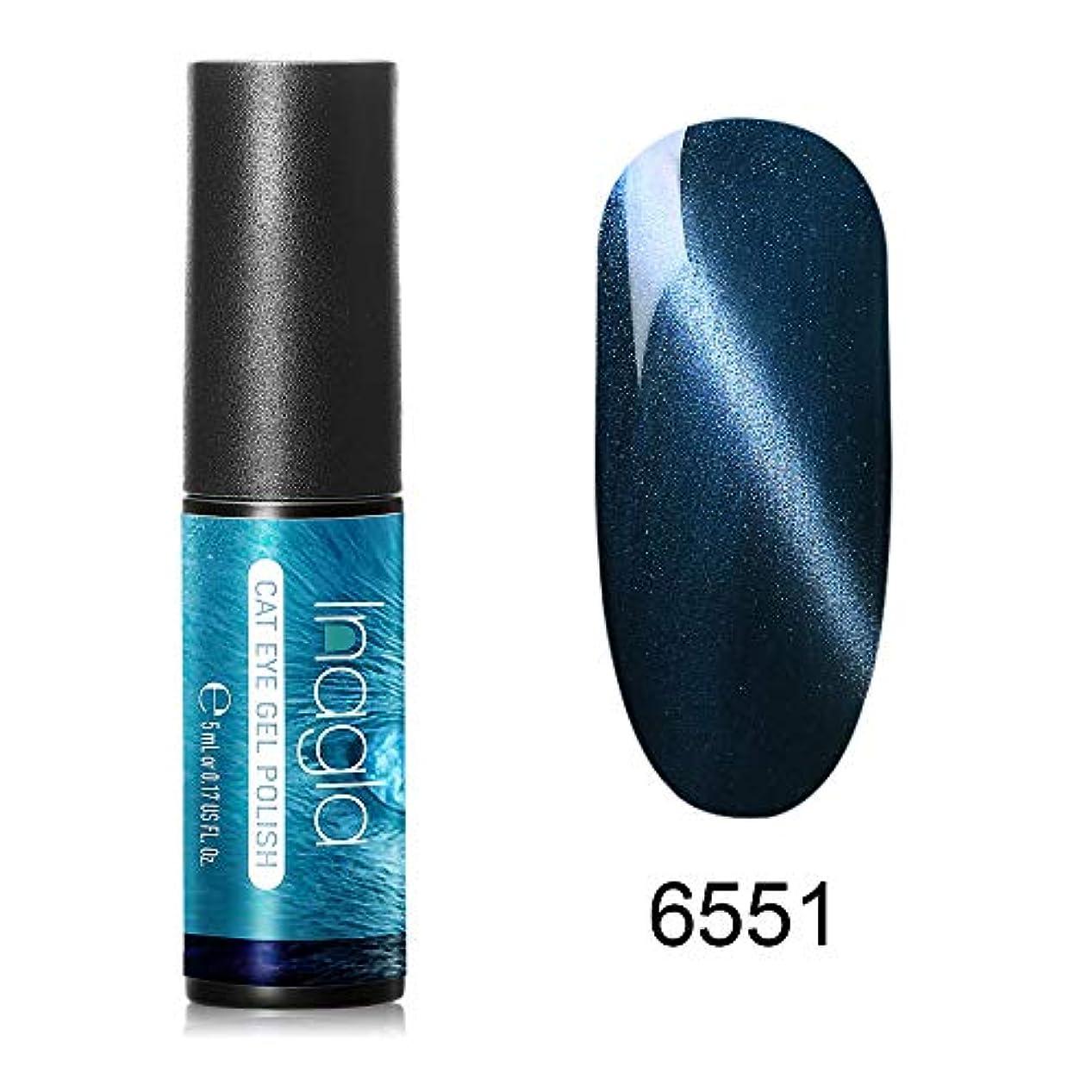 何でもラジウム一貫したInagla ジェルネイル カラージェル 猫目ジェル 猫目 模様を作れる 76色入り 5ml-6551