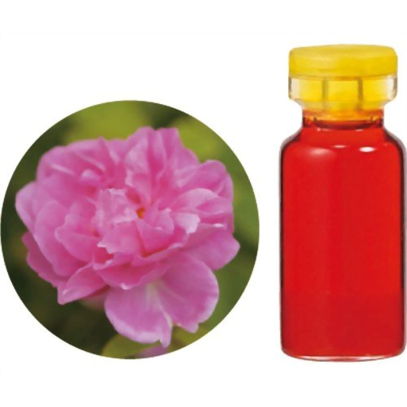 同意するスマイル小切手生活の木 Herbal Life 花精油 ダマスクローズAbs.(モロッコ産) 3ml