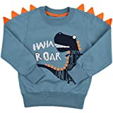 DDSOL Boys Toddler Sweater T-Shirts Long Sleeve 3D Dinosaur Pullover Tops T-rex Cotton Tee for Kid Clothes Size 2-7T