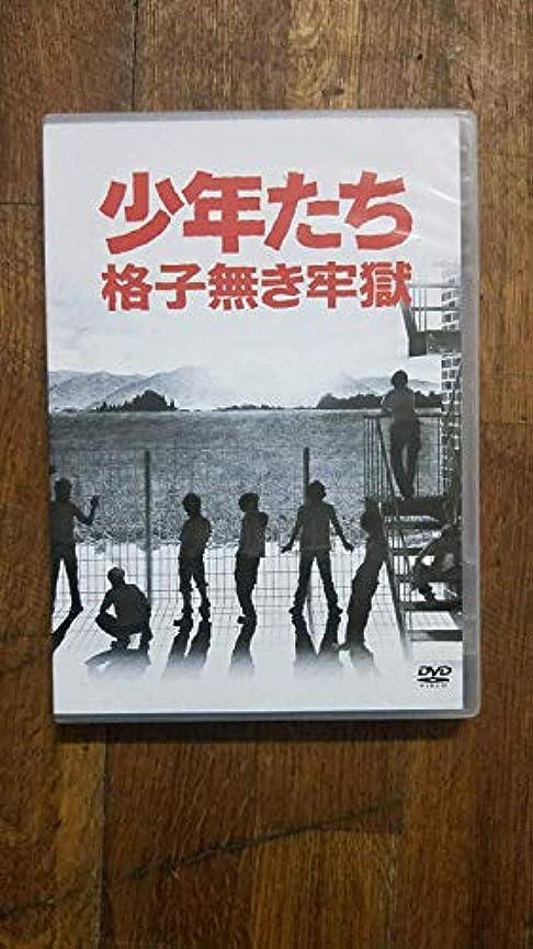 不良ソースインタビュー少年たち 格子無き牢獄 [DVD]