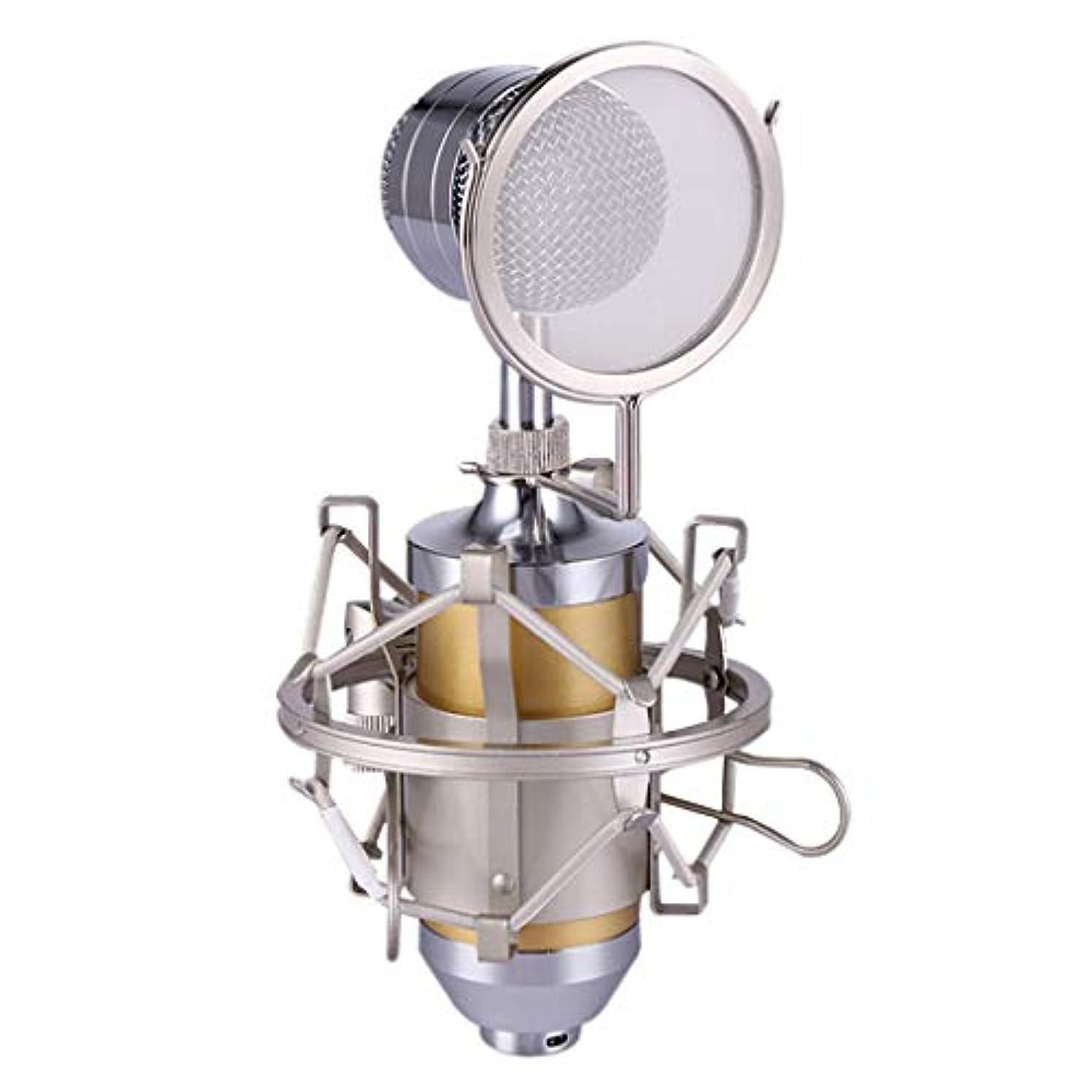 シプリー足音オーバーフローホームKTVパーティー録音インタビューを歌うためのiPhoneのAndroidスマートフォンポータブルハンドヘルドマイクロホン用のワイヤレスカラオケマイク