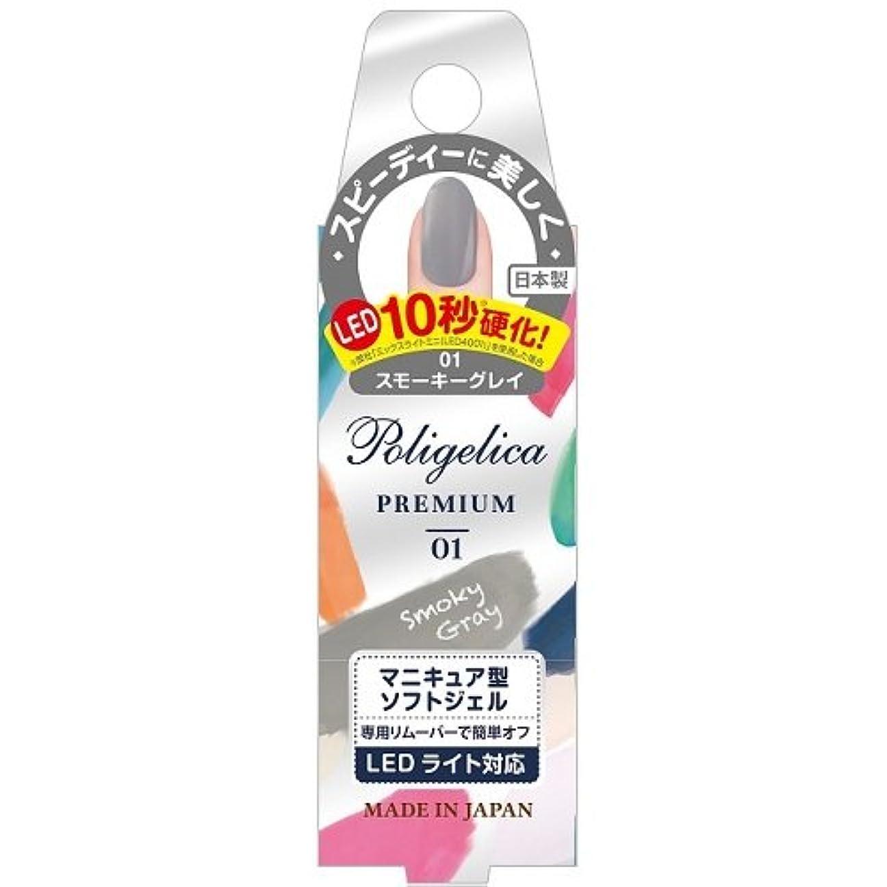 糸行商含意BW ポリジェリカプレミアム カラージェル 1001/スモーキーグレイ (6g)