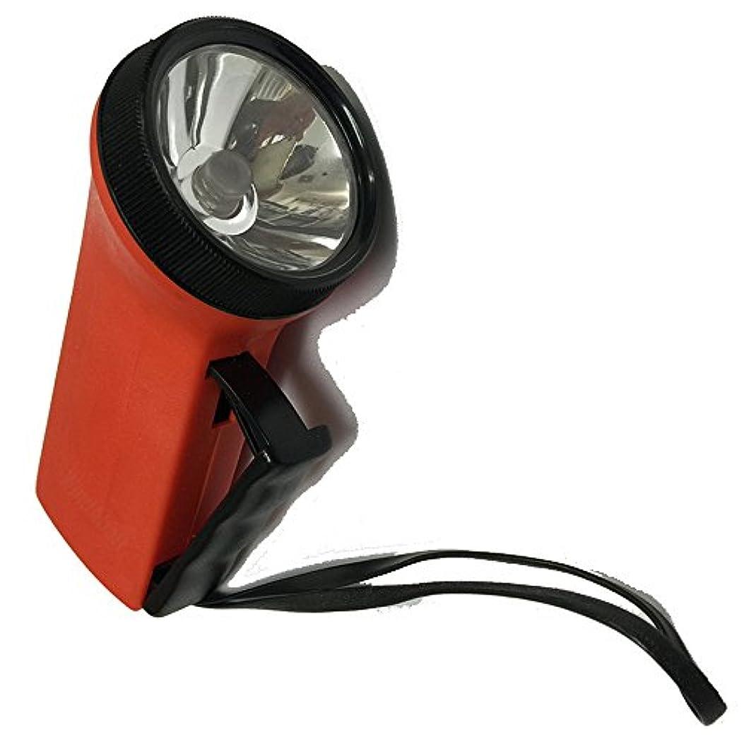 洪水予想外外側電池のいらないLEDダイナモハンディライト 【E10サイズのLED豆電球の取り外し転用可能】 ダイナモLED懐中電灯 電池がなくても光るので緊急の防災?アウトドア用に最適