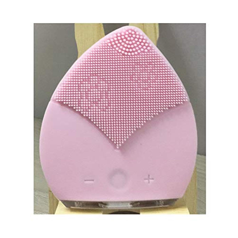 洗剤日曜日発表する電動洗顔ブラシ - USB 充電 携帯用電動シリコンフェイスクレンジングブラシ 5速 全身防水 洗浄機毛穴ク リーナーホーム顔美容機器