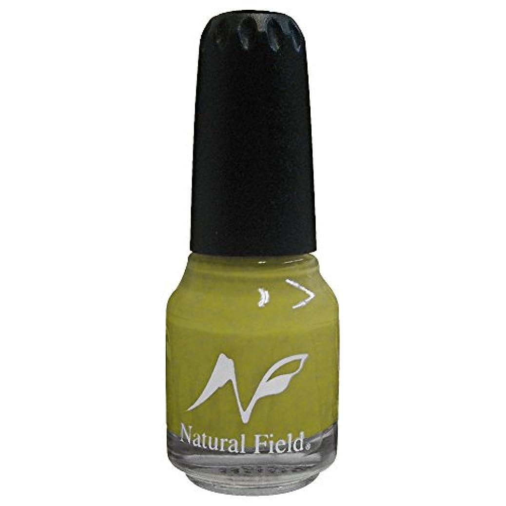 拷問うつ体現するNatural Field ネイルポリッシュ メタリックカラー 2156 M22 12ml