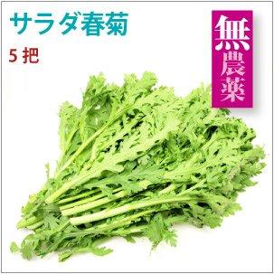 【サラダ春菊 5把】長野県産無農薬栽培。
