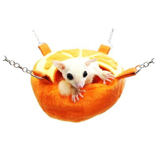 レインボー『フルーツカップ オレンジ』