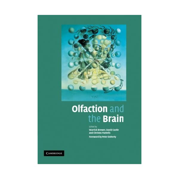 Olfaction and the Brainの商品画像