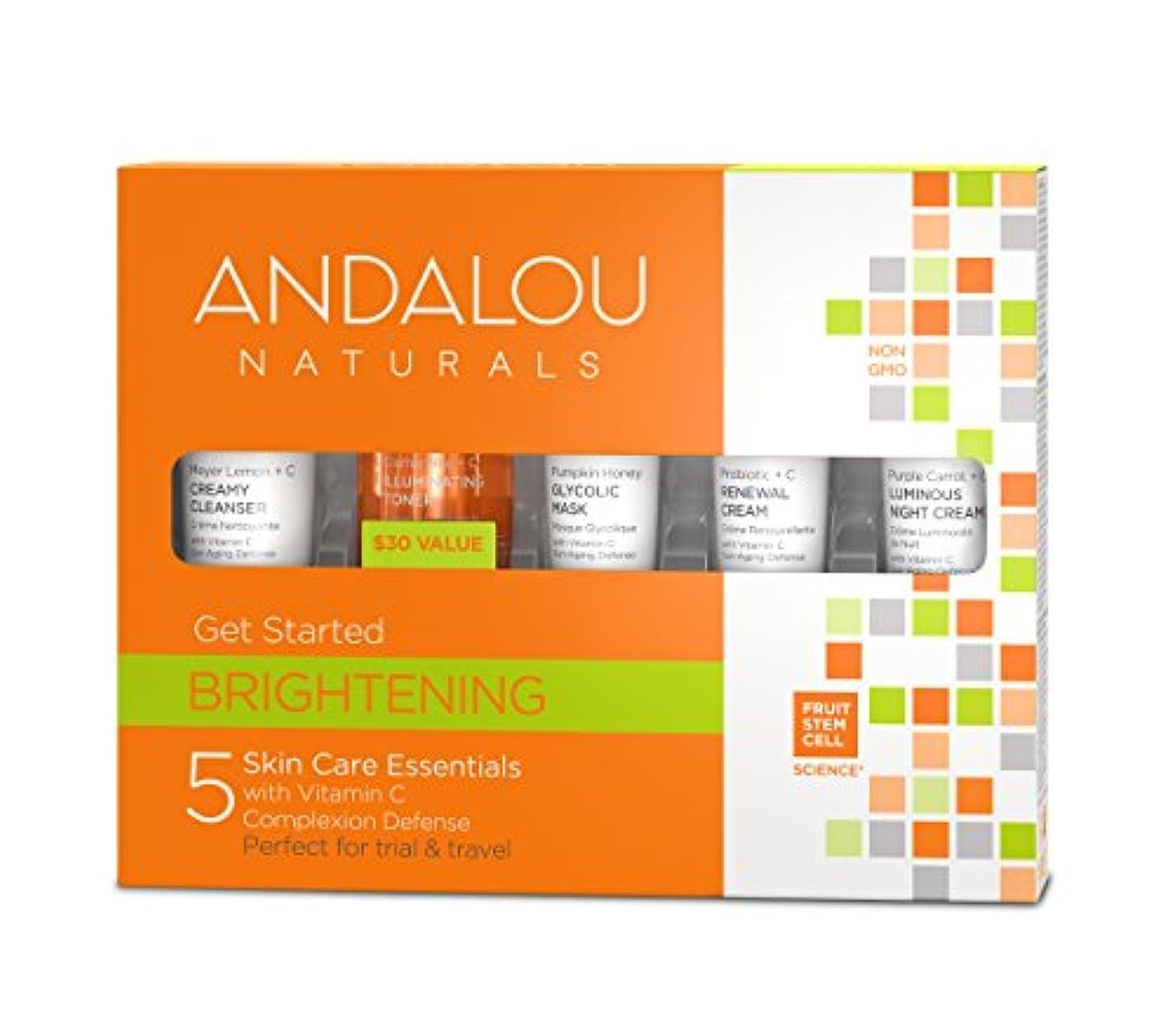 抽象音楽を聴く狐オーガニック ボタニカル トライアルキット 化粧水 洗顔料 ナチュラル フルーツ幹細胞 「 B トライアルキット 」 ANDALOU naturals アンダルー ナチュラルズ