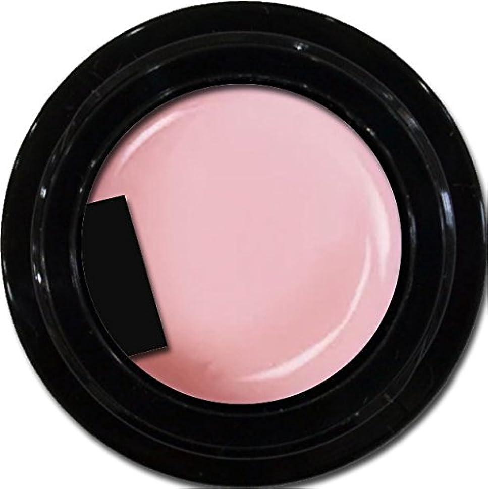 スピン不忠咽頭カラージェル enchant gel color gel S502 Robe Sheer 3g/ エンチャントジェル カラージェル S502ローブシアー 3グラム