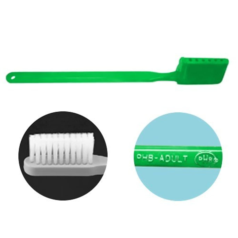 削減効能においPHB 歯ブラシ アダルトサイズ 1本 ネオングリーン