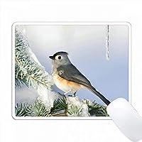 青いアトラスシダーの冬、マリオン、イリノイ州、タフツティッドマウス。 PC Mouse Pad パソコン マウスパッド