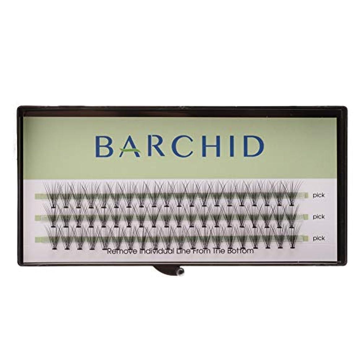 ペイン物理学者干渉するBARCHID 高品質超極細まつげエクステ太さ0.07mm 10本束10mm Cカール フレア セルフ用 素材  マツエク