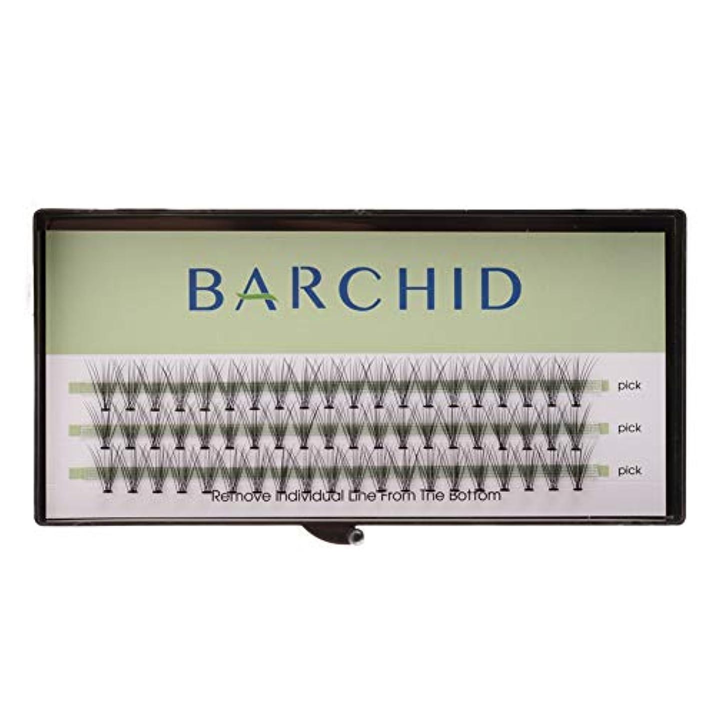 最悪キャストカラスBARCHID 高品質超極細まつげエクステ太さ0.07mm 10本束10mm Cカール フレア セルフ用 素材  マツエク