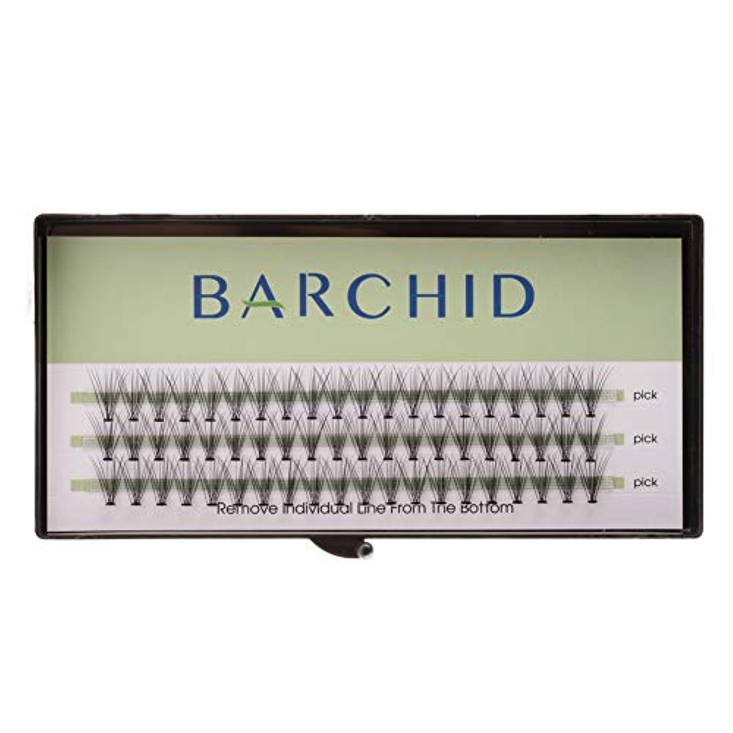 花火アーティストゴールデンBARCHID 高品質超極細まつげエクステ太さ0.07mm 10本束10mm Cカール フレア セルフ用 素材  マツエク