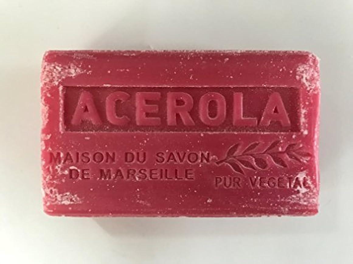 痛い同意する太鼓腹Savon de Marseille Soap Acerola Shea Butter 125g