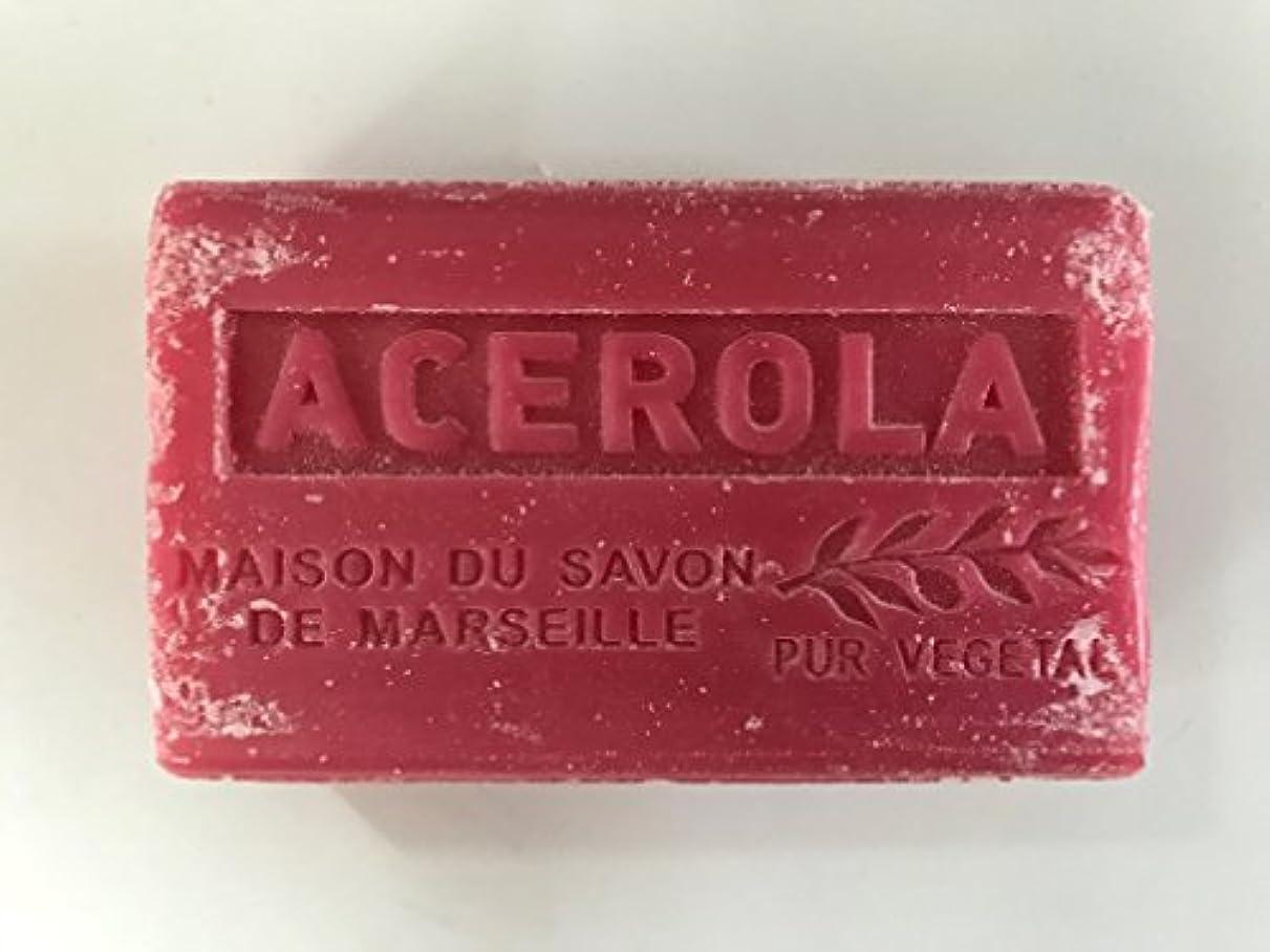 新しい意味巨大な彼女自身Savon de Marseille Soap Acerola Shea Butter 125g
