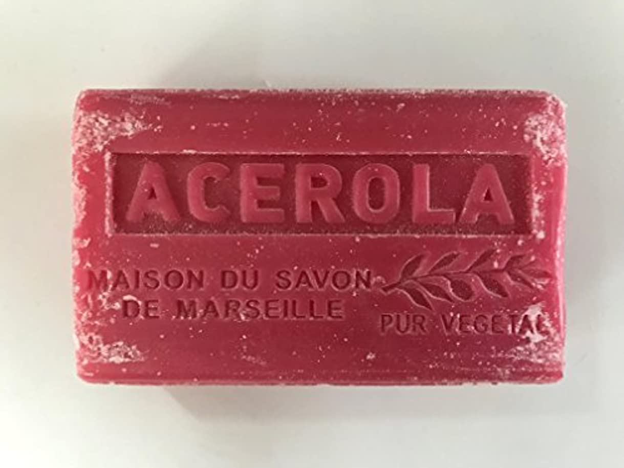 電話棚先住民Savon de Marseille Soap Acerola Shea Butter 125g