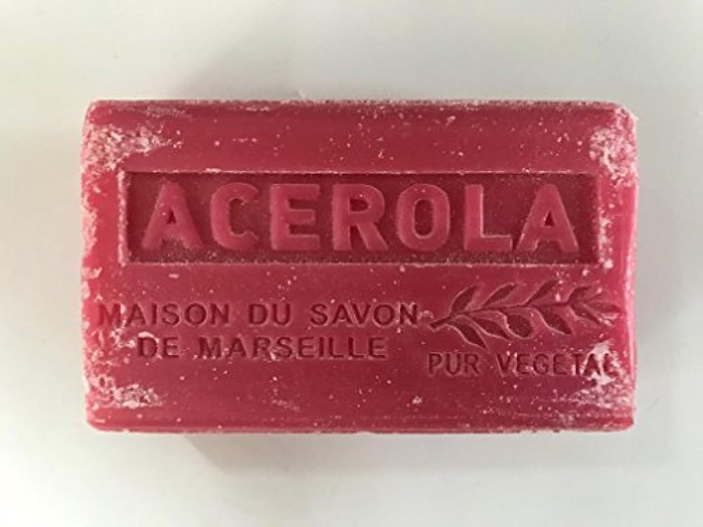 元気予測子中央Savon de Marseille Soap Acerola Shea Butter 125g
