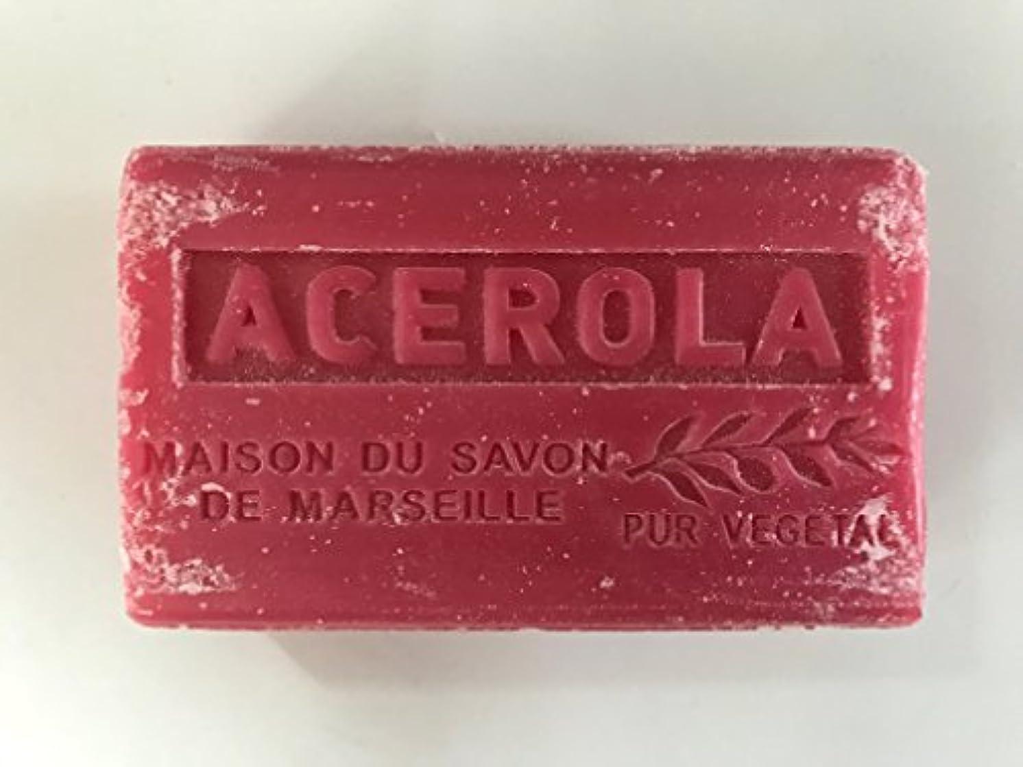 笑いフレキシブル倫理Savon de Marseille Soap Acerola Shea Butter 125g