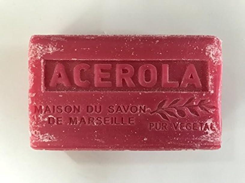 申請者集める憂鬱なSavon de Marseille Soap Acerola Shea Butter 125g