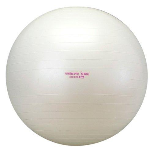 ALINCO(アルインコ) エクササイズボール 65cm EXG025 【文字色指定不可】 -