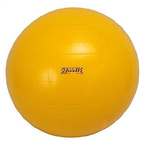ダンノ(DANNO) ギムニクカラーボール 75cm D5433