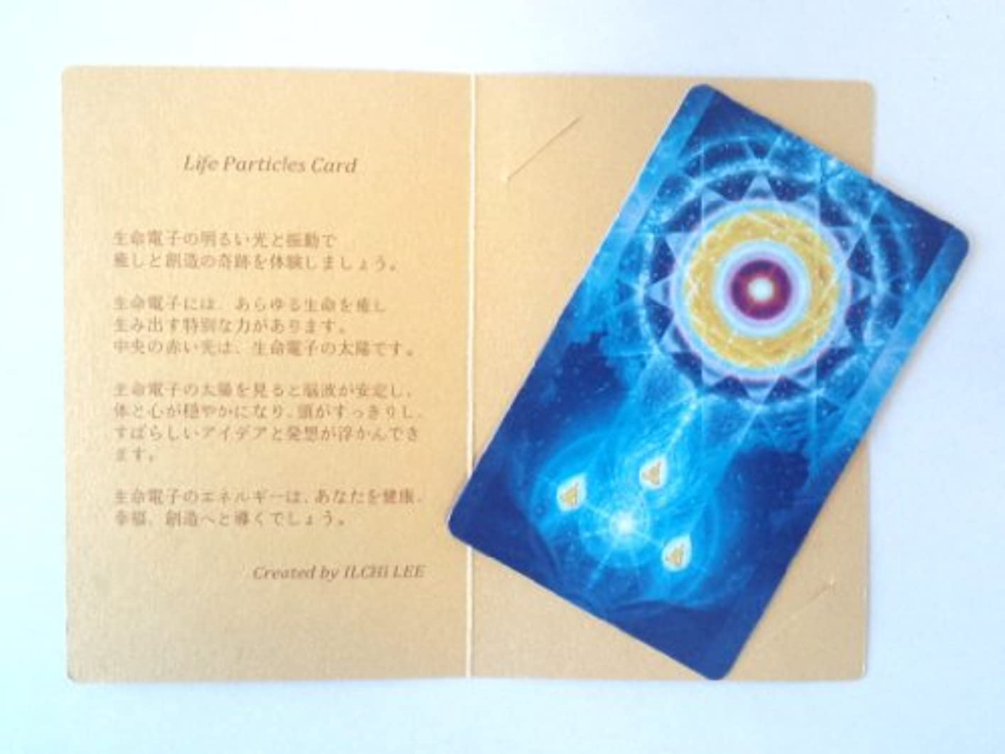 小切手額忍耐生命電子カード